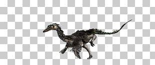 Jurassic Park: The Game Velociraptor PNG