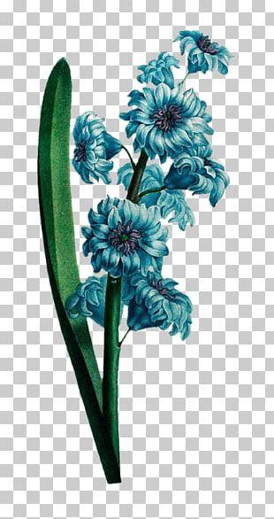 Cut Flowers Plant PNG