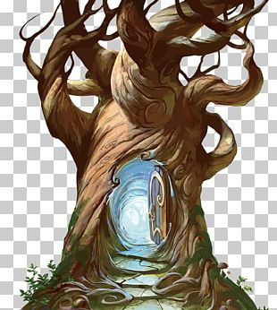 Tree Hollow Trunk PNG