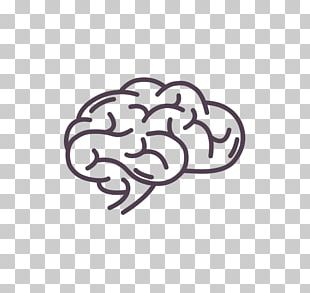 Brain Peripheral Nervous System Computer Icons PNG