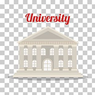 Student University Academic Degree Education College PNG