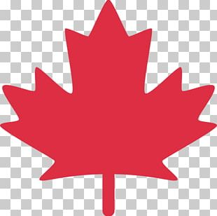Red Maple Maple Leaf Canada PNG