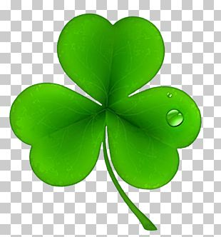 Ireland Saint Patrick's Day National ShamrockFest Public Holiday PNG