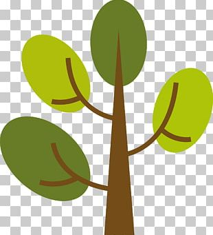 Branch Leaf Tree Euclidean PNG