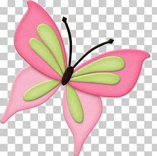 Photograph Butterfly Free Content PNG