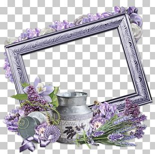Floral Design Cut Flowers Frames PNG