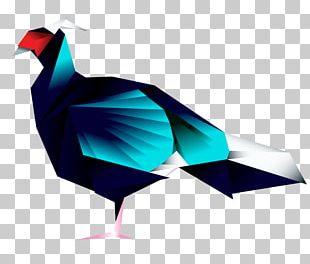Bird Germain's Peacock-pheasant Peafowl Beak Feather PNG