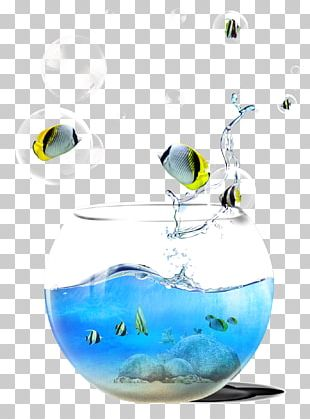 Fish Tank Background Material PNG