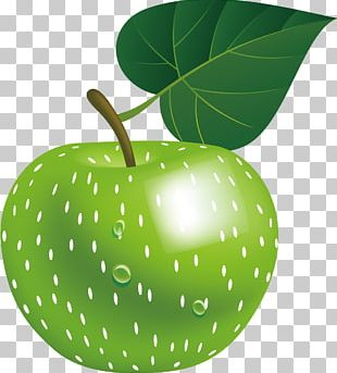 Apple Green Infographic Euclidean PNG