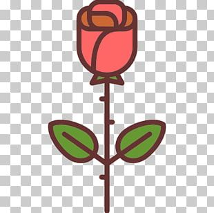 Beach Rose Cartoon Flower PNG