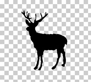 Reindeer Red Deer Elk Christmas PNG