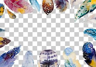 Watercolor Painting Feather Boho-chic Illustration PNG