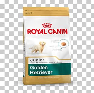 Golden Retriever Labrador Retriever Puppy Pug Cat Food PNG