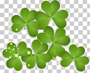 Ireland Saint Patricks Day Clover PNG