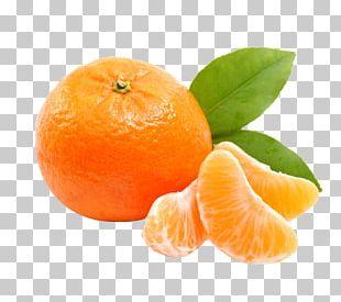 Mandarin Orange Tangerine Clementine Marmalade Satsuma Mandarin PNG