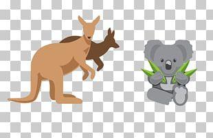 Australia Element Euclidean PNG