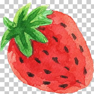 Transparent Watercolor Watercolor Painting Strawberry Fruit PNG