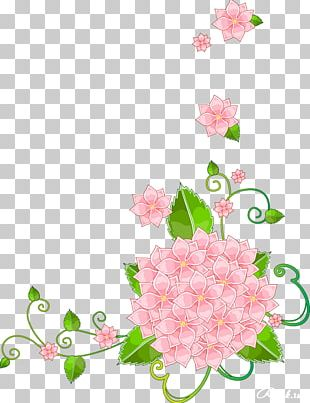 Flower Stock Photography Desktop PNG