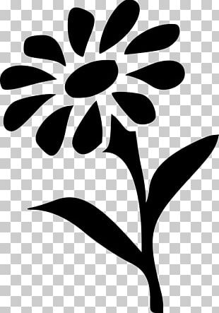 Border Flowers Floral Design Stencil Art PNG
