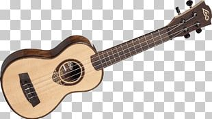 Ukulele Musical Instruments Guitar Plucked String Instrument String Instruments PNG