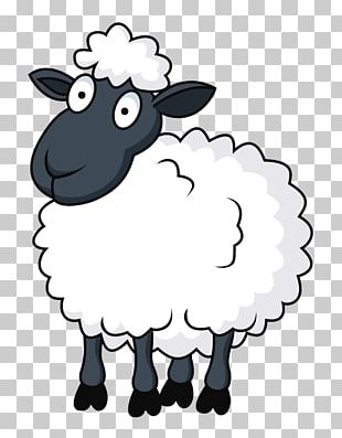 Sheep Cartoon PNG