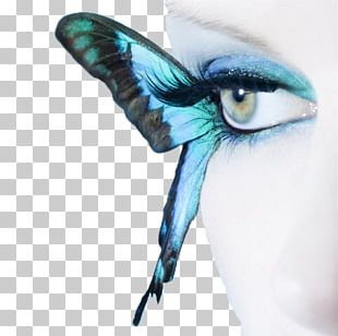 Butterfly Blue Eye Stock Photography Cosmetics PNG