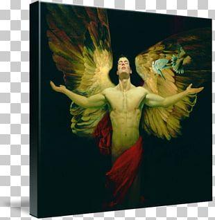 Watercolor Painting Art Fallen Angel PNG
