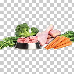 Raw Foodism Dog Vegetarian Cuisine Leaf Vegetable Raw Feeding PNG