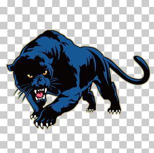 Black Panther Leopard PNG
