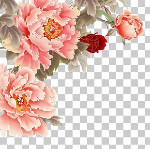Moutan Peony Pink Flowers PNG