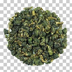 Oolong Green Tea White Tea Longjing Tea PNG