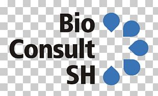 Consultant Information Technology Consulting Management Consulting PNG