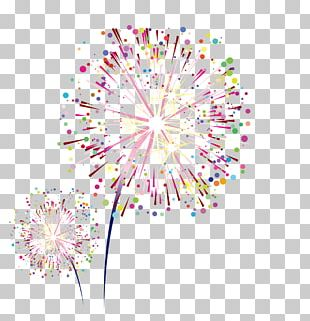Sumidagawa Fireworks Festival Graphic Design PNG