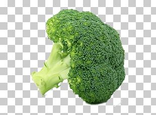 Leaf Vegetable Food Broccoli Winter Vegetable PNG