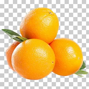 South Africa Blood Orange Mandarin Orange Tangelo PNG