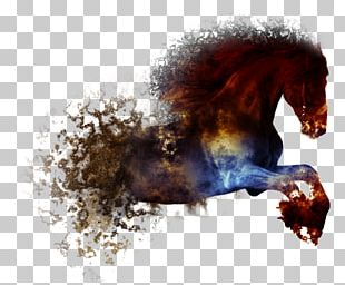 American Paint Horse Abstract Art Painting Horseshoe Drawing PNG