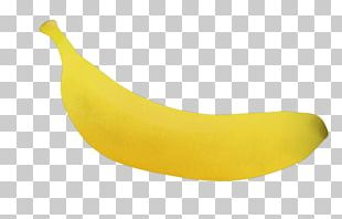 Banana Fruit Drawing Cartoon PNG