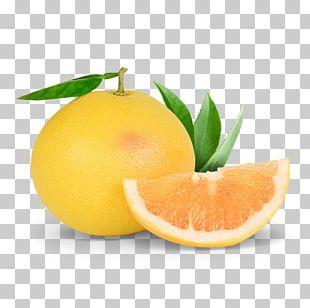 Clementine Grapefruit Tangerine Mandarin Orange Tangelo PNG
