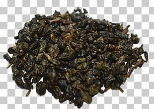 Oolong Nilgiri Tea Green Tea Gunpowder Tea PNG