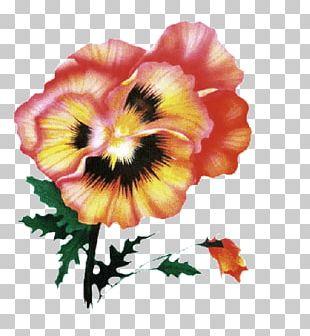 Victorian Era Flower Blog Petal PNG