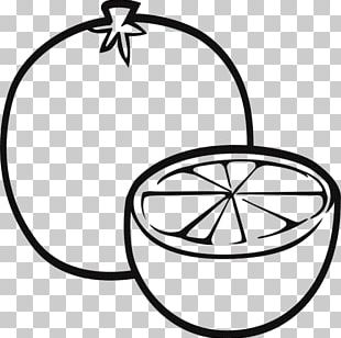 Coloring Book Fruit Drawing Child PNG