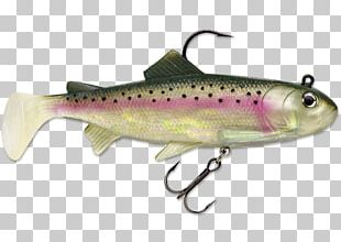 Coastal Cutthroat Trout Salmon Spoon Lure Oily Fish PNG