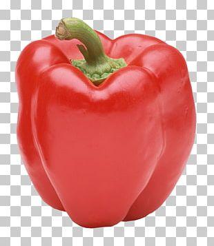 Bell Pepper Cayenne Pepper Chili Pepper Black Pepper PNG