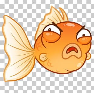 Goldfish Cartoon PNG