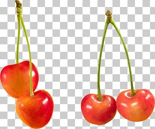 Display Resolution Fruit Resolution PNG