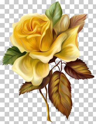 Painting Yellow Rose Oil Paint PNG