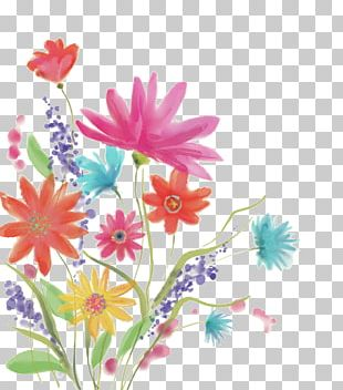 Floral Design Watercolour Flowers Watercolor Painting Watercolor: Flowers PNG