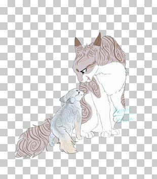 Kitten Whiskers Tabby Cat Drawing PNG