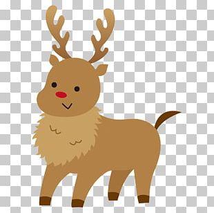 Reindeer Christmas Day Christmas Card Illustration PNG