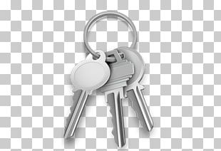 Set Of Silver Keys PNG